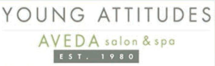 Young Attitudes Aveda Salon & Spa Shols Of La Jolla